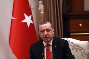 Трамп поговорил по телефону с Эрдоганом