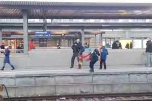 Служебная собака столкнула женщину с перрона на рельсы