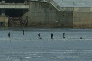 На Киевском водохранилище - угроза массового мора рыбы