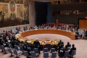 Совбез ООН одобрил представленную Украиной резолюцию