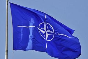 Кризис доверия внутри Альянса: эксперт оценил шансы Украины вступить в НАТО
