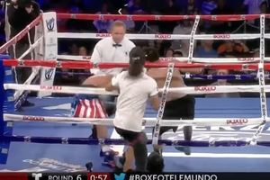 Болельщик выскочил на ринг, чтобы заступиться за своего кумира
