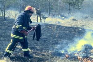 В Киеве и пригороде горят гектары травы