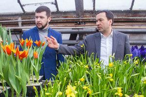 В этом году в столице высадят рекордное количество цветов - Пантелеев