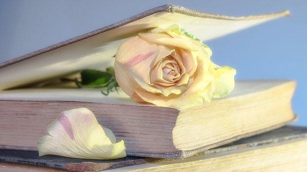 Литературоведы сделали сенсационное объявление опричине смерти писательницы Джейн Остин