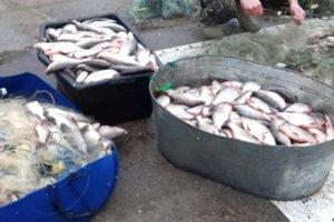 В Киеве задержали браконьера с уловом рыбы на 200 тысяч гривен