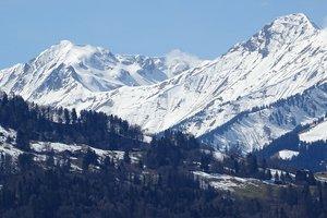 В Карпатах сошло пять снежных лавин