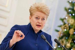 Грибаускайте считает РФ главной угрозой Восточной Европе