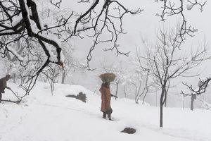 Индию внезапно завалило снегом