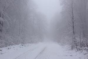 На Западную Украину вернулась зима