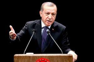 """Эрдоган: Нидерланды """"заплатят"""" за дипломатический скандал"""