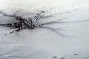 Под Харьковом парень провалился под лед и утонул