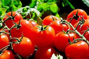 Что съесть, чтобы не болеть: ученые назвали ТОП-7 продуктов против рака