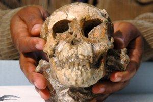 ТОП-10 открытий, совершенных благодаря исследованиям древних ДНК