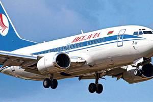 После взлета самолет столкнулся со стаей птиц и вернулся в минский аэропорт