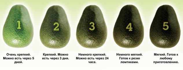 1d1de5af-28dc-4f11-9b4a-89e417c27ac5