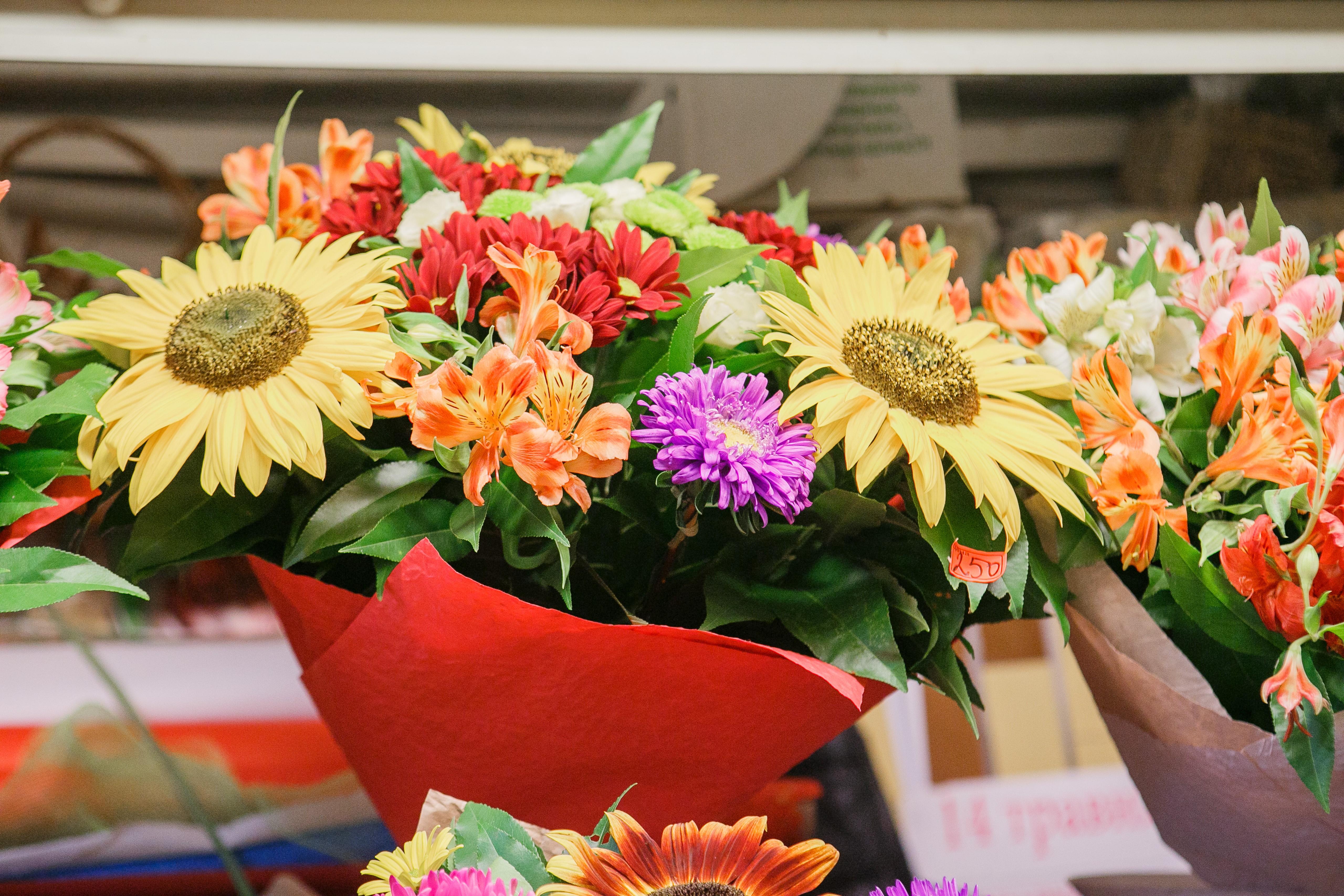 Где купить цветы утром подарок начальнику на день рождения мужчине купить