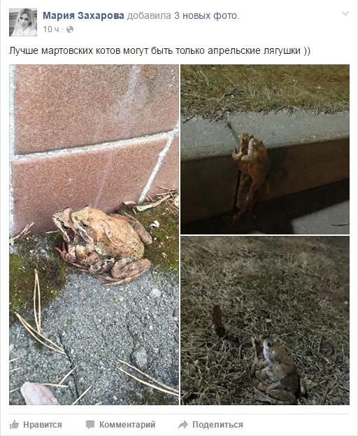 Лягушачье порно
