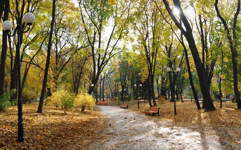 mariinskiy-park-1_01