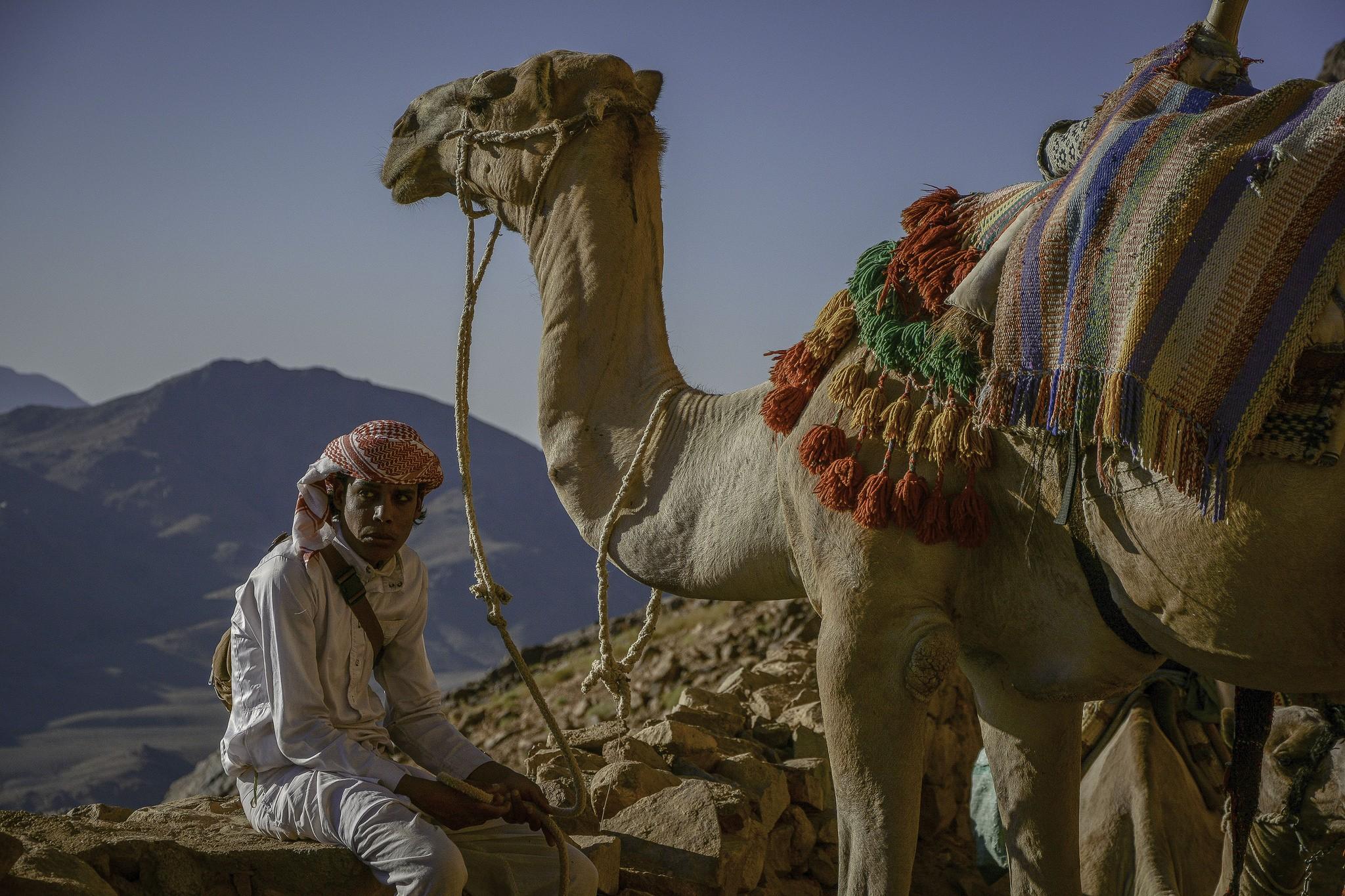 Отдых в Египте: во сколько обойдется киевлянам тур на двоих