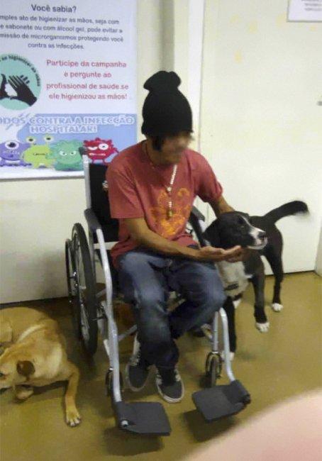 51b0e4a-homeless-man-hospital-waiting-dogs-chris-mamprim-5-5c1213b9b4f7f--700_1