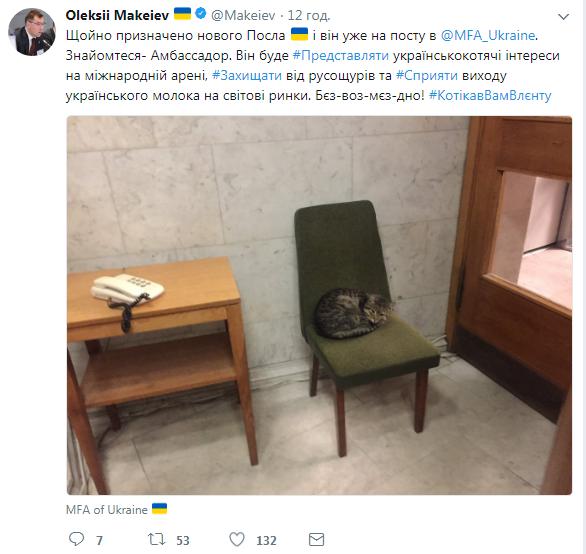 «Защитит отрусокрыс»: МИД Украины взял наработу кота