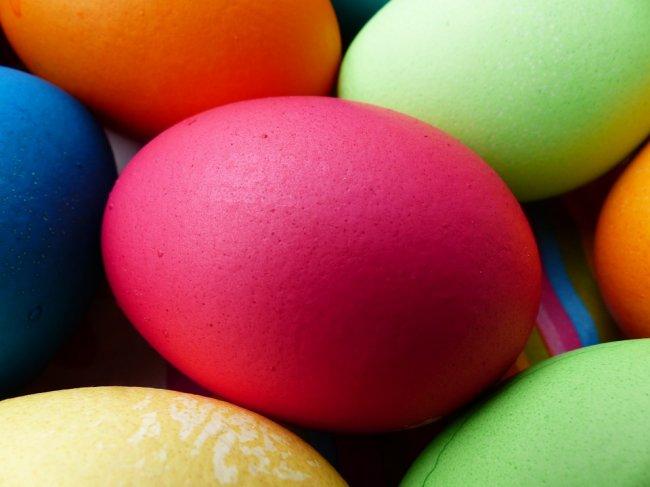 egg-100168_960_720