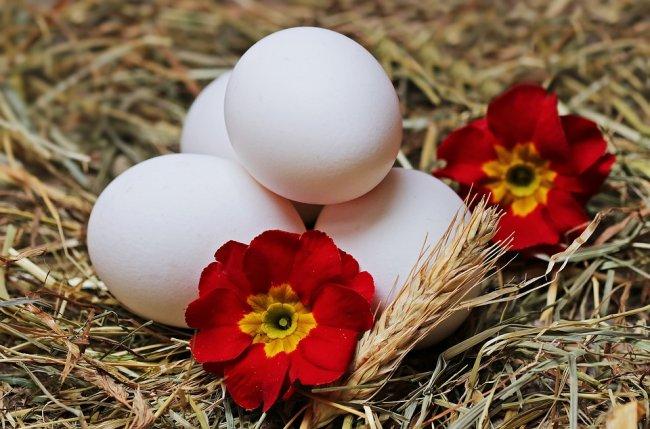 egg-2048470_960_720