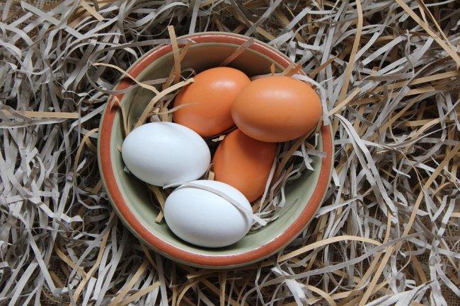 egg-3188041_960_720