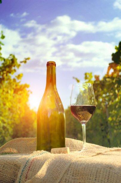 Пять сортов вин, о которых обязательно следует знать, фото-5