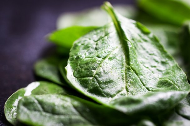 green-leaf-close-up-on-a-dark-table_1220-588