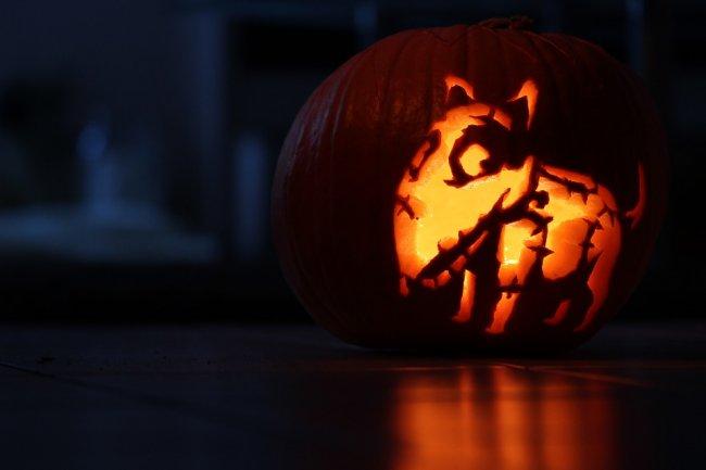 pumpkin-1743367_960_720
