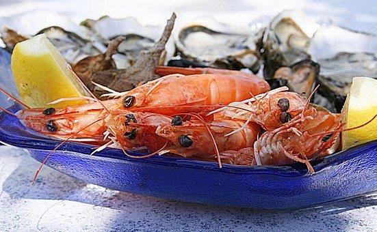 shrimp-1502724__340