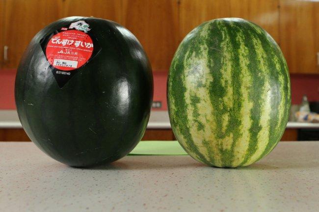 watermelon_exterior