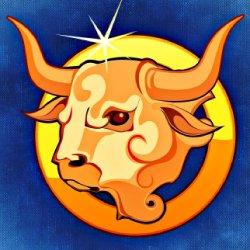 bull-759381_1920