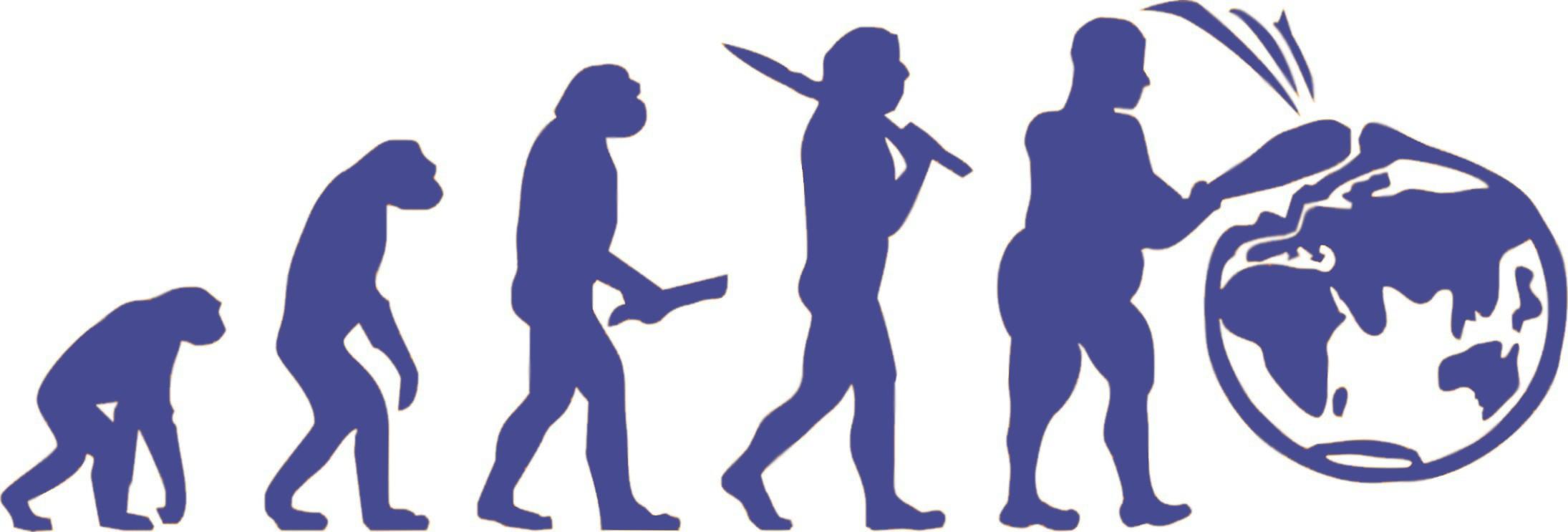 evolution-2305142