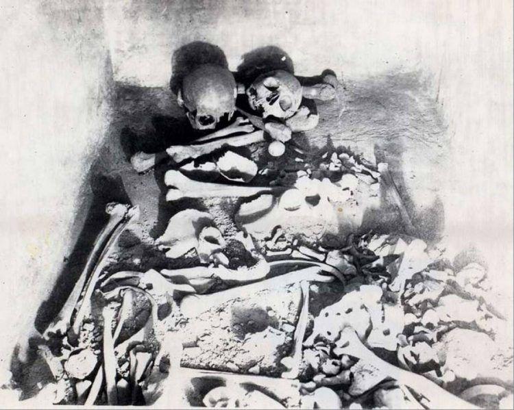 kosti-1-750x599