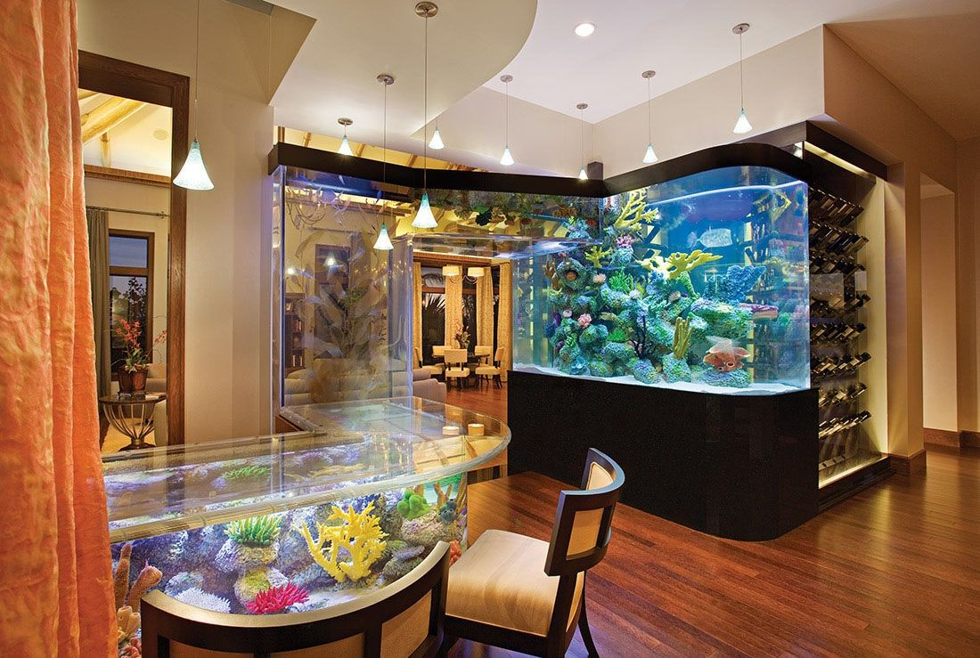 Интерьер аквариум фото