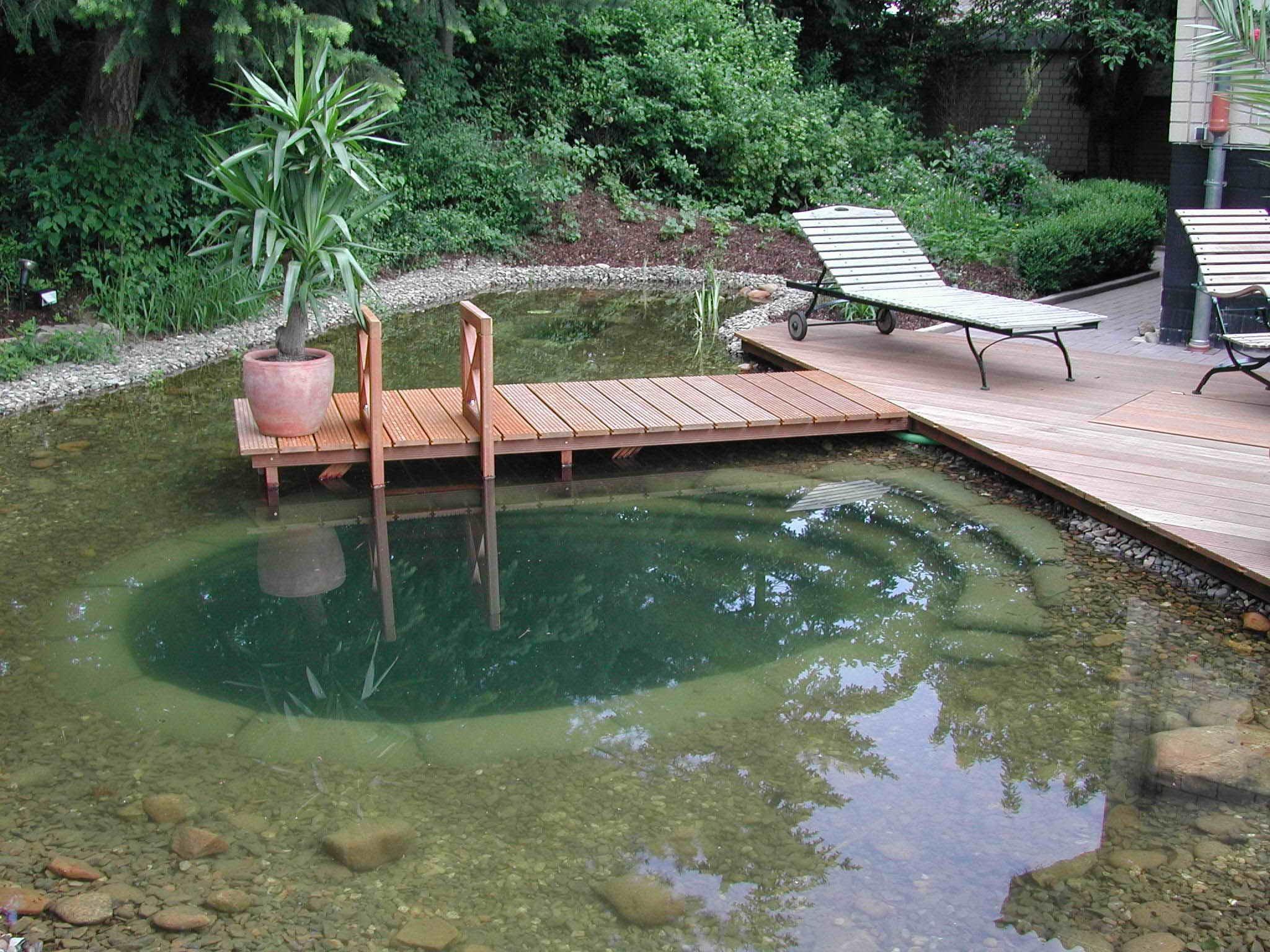 Большой водоем на даче фото