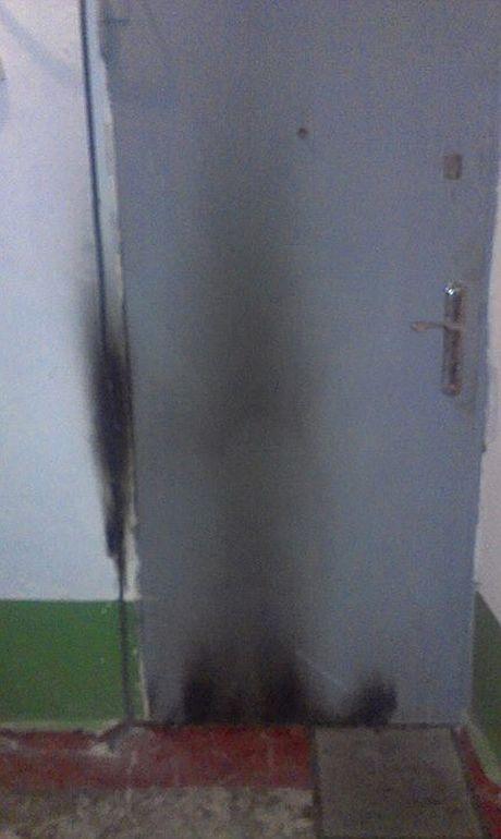 3b18bcb-dveri