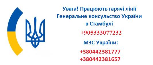 13512093_910380992403577_5468978964184597584_n_02