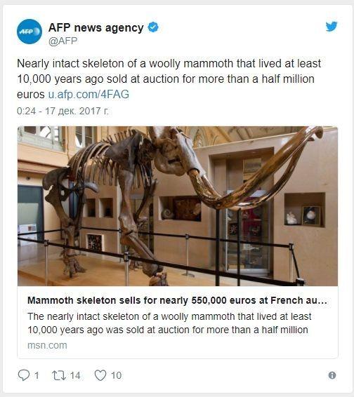 Скелет гигантского мамонта изСибири продали воФранции практически за €550 тыс.