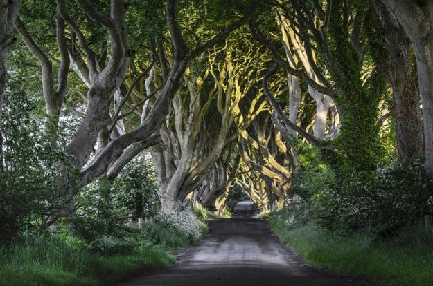 xtravel-game-of-thrones-seven-kingdoms-6.jpg.pagespeed.ic.q-blnucf-t