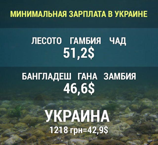 Как только в Украине возникают серьезные проблемы, БПП дистанцируется, будто бы во всем виновато только правительство, - Небоженко - Цензор.НЕТ 4683