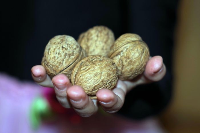 nuts-1839438_1280