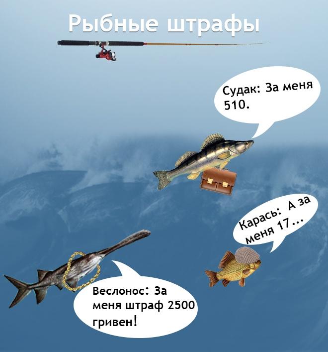 .jpg_01
