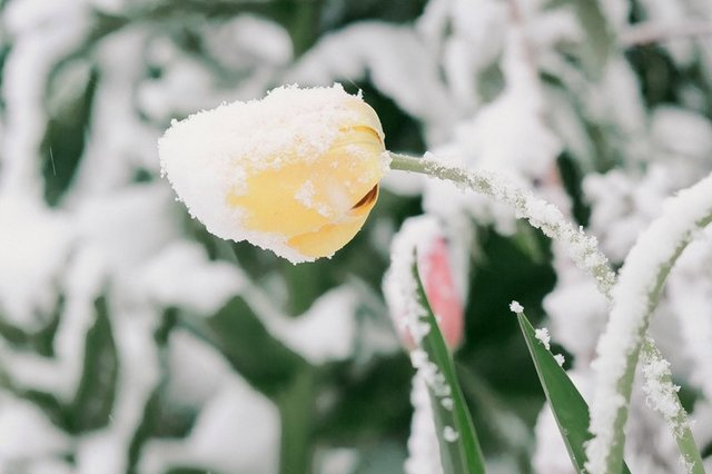 фото донбасс зима