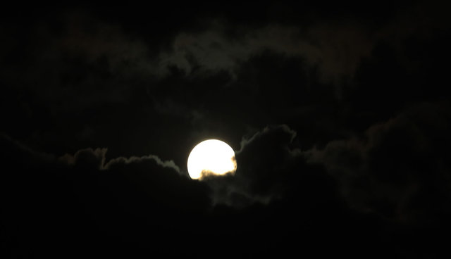 Жители Земли наблюдали за лунным затмением , фото-16