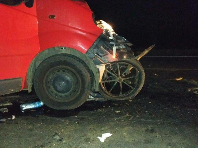 Под Одессой микроавтобус сбил телегу, трое человек погибли