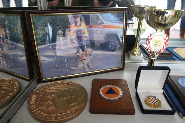 Награды. Лабрадор занял первое место на чемпионате мира. Фото: В. Лазебник